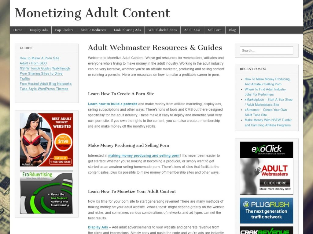 What Is Adult Affiliate Marketing