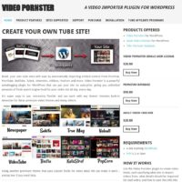 Video Pornster 3