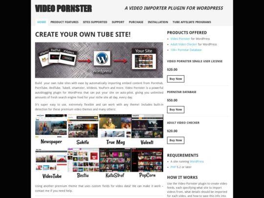 Video Pornster