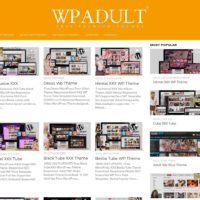 WP Adult Themes 4